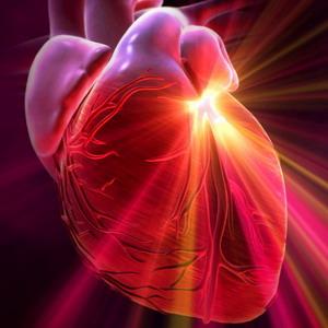 твое сердце