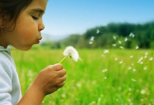 spring-wish-list